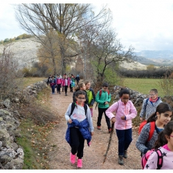 excursion-babia-5c2ba-13