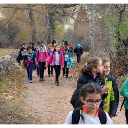 excursion-babia-5c2ba-14