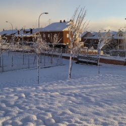 nieve11