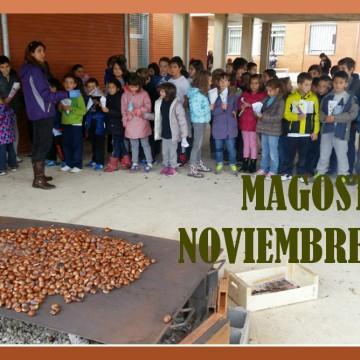 MAGOSTO 2014